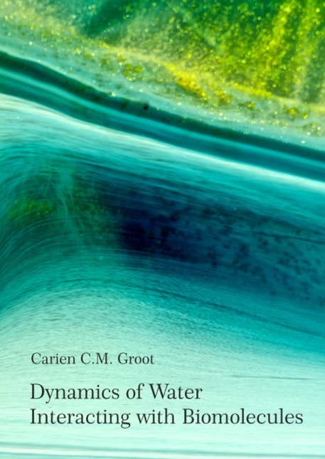 Thesis cover Carien Groot