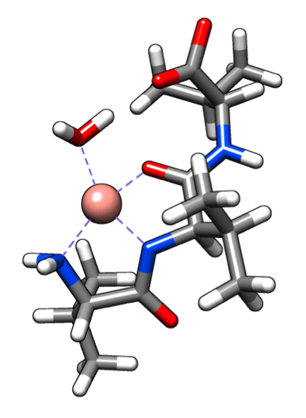 Complex of chiral molecule with cobalt